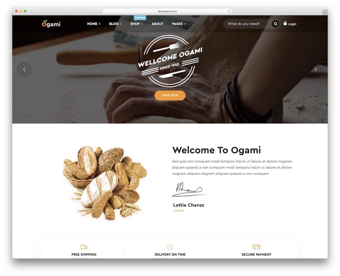 ogami wordpress theme
