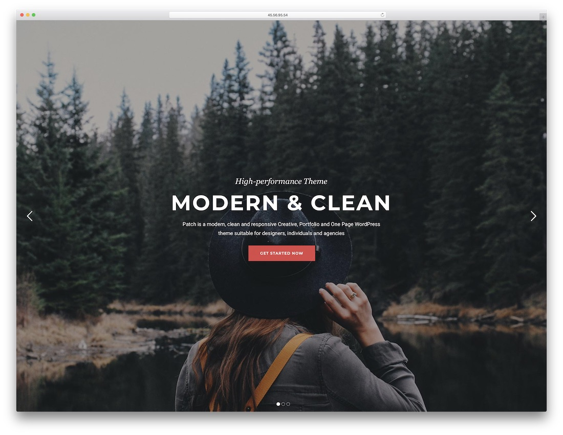 onliest cheap wordpress theme