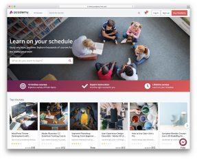 Online Course Wordpress Plugins