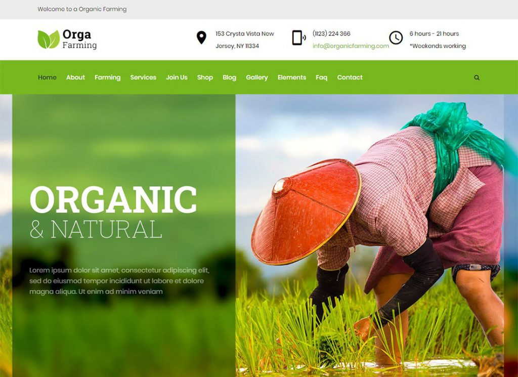 , 2020 Best Agriculture WordPress Themes for Your Farming Business, Rojak WP