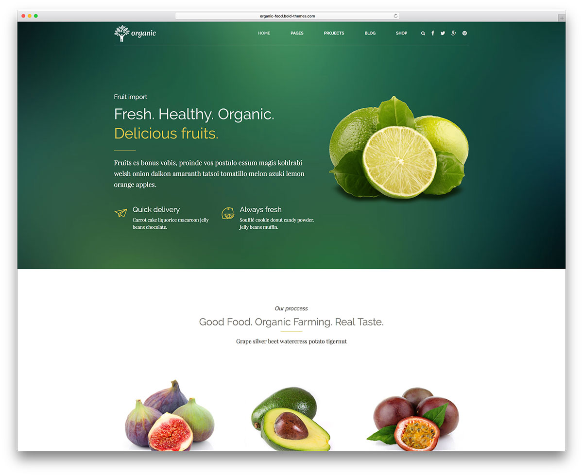 Organici is an advanced WordPress theme that perfectly t