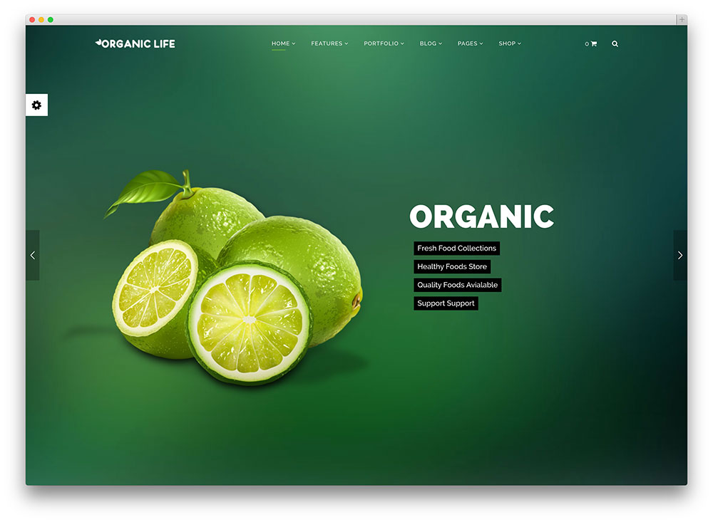 organic life eco friendly wordpress theme