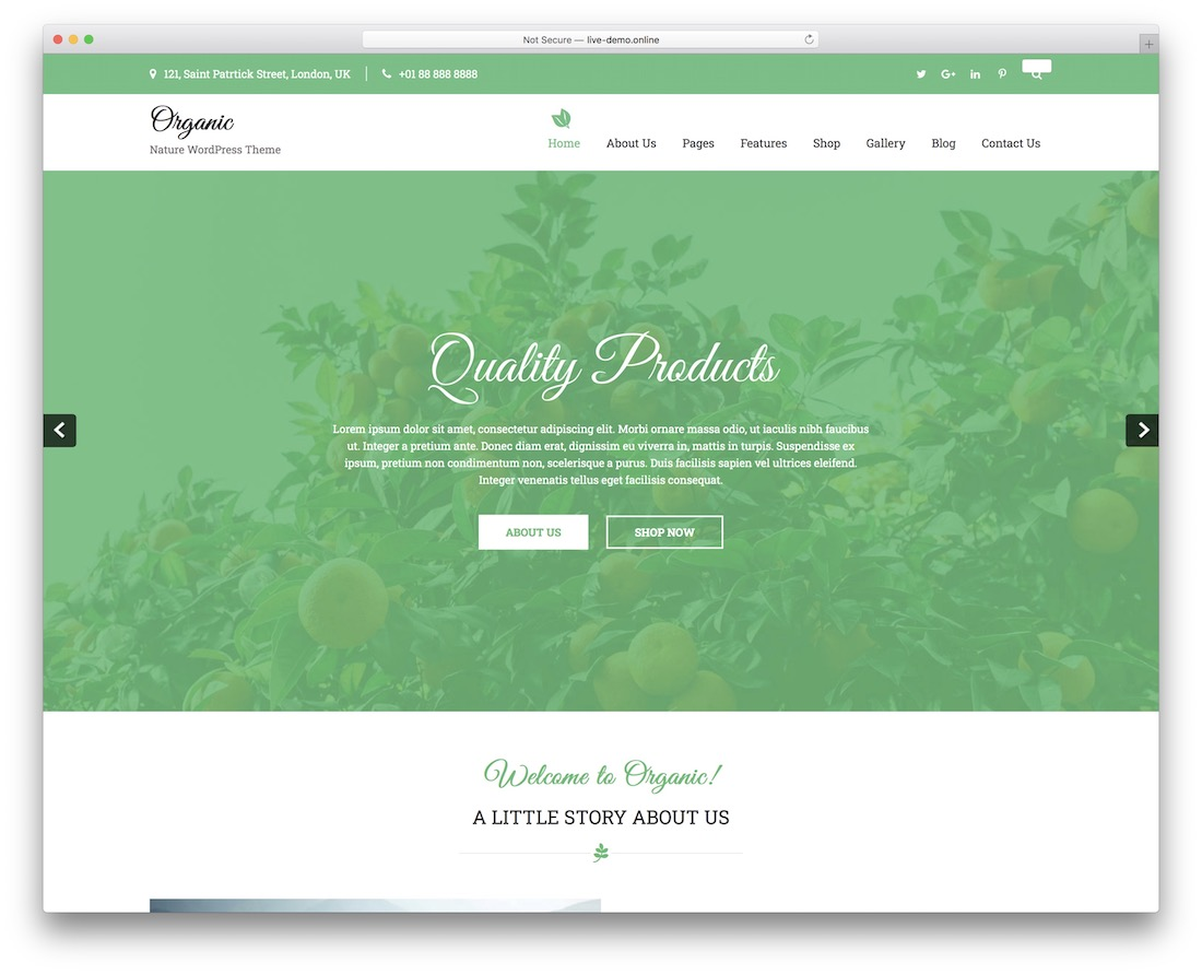 organic lite free nature wordpress theme