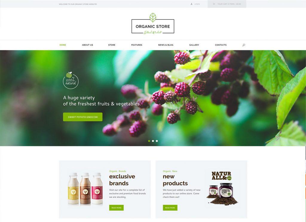 organic-store-organic-food-eco-products-theme