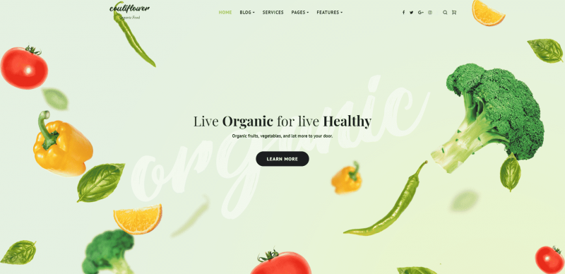 Organic Food Is Modern Society's Obsession; Organic WordPress Themes Are Yours