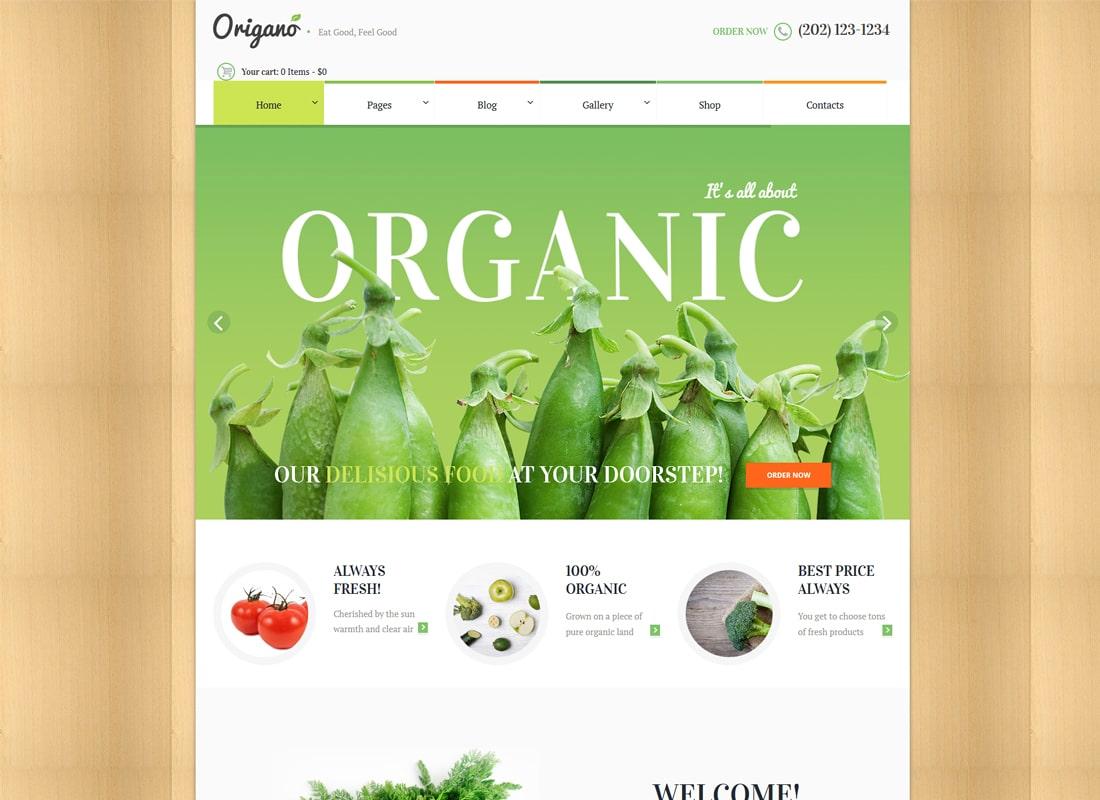 Origano | 유기농 식품 및 에코 농장 WordPress Theme