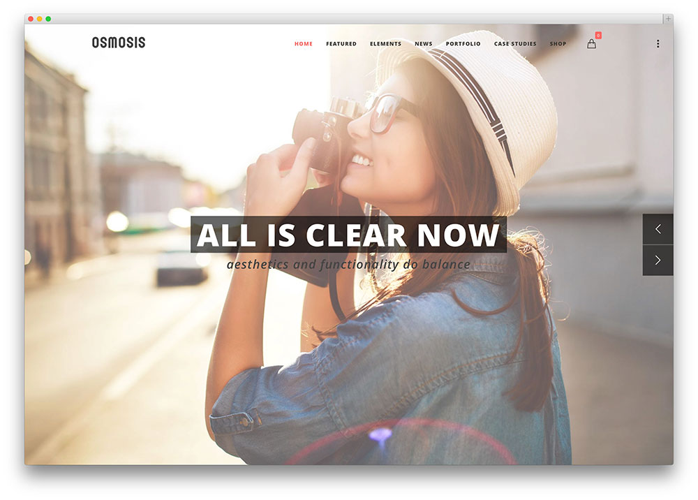 osmosis WordPress theme preview