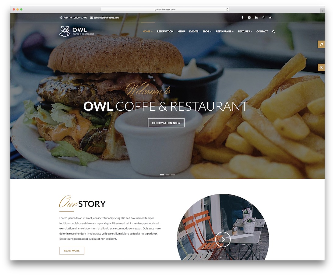 owl drupal business template