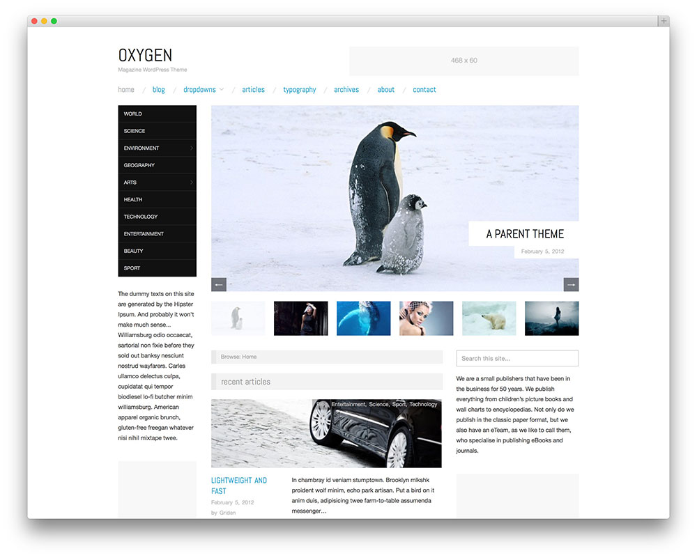 oxygen - minimal photography template