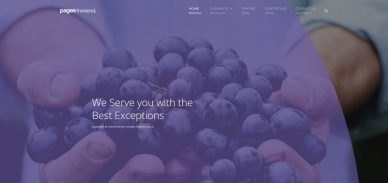 Pages-interactive-website-templates