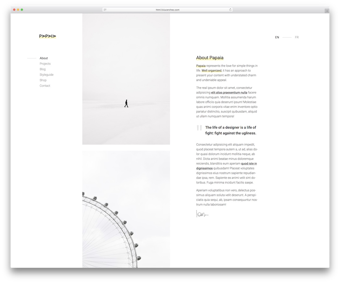 papaia blog website template