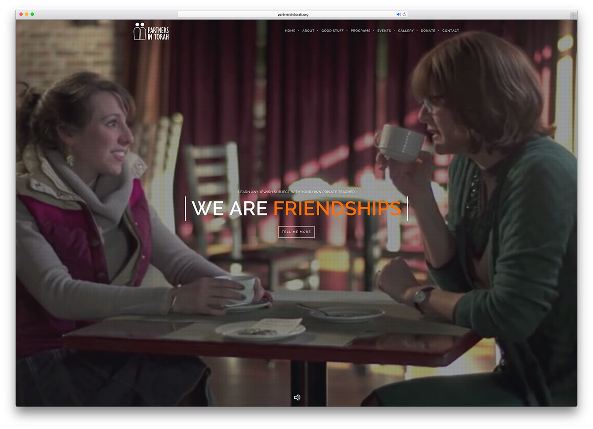 partnersintorah-organization-site-with-brooklyn
