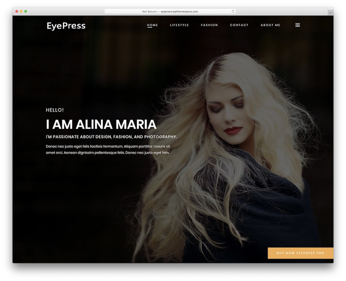 personal eye free wordpress theme