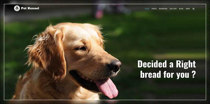 Pet Care Dog Kennels WordPress Theme
