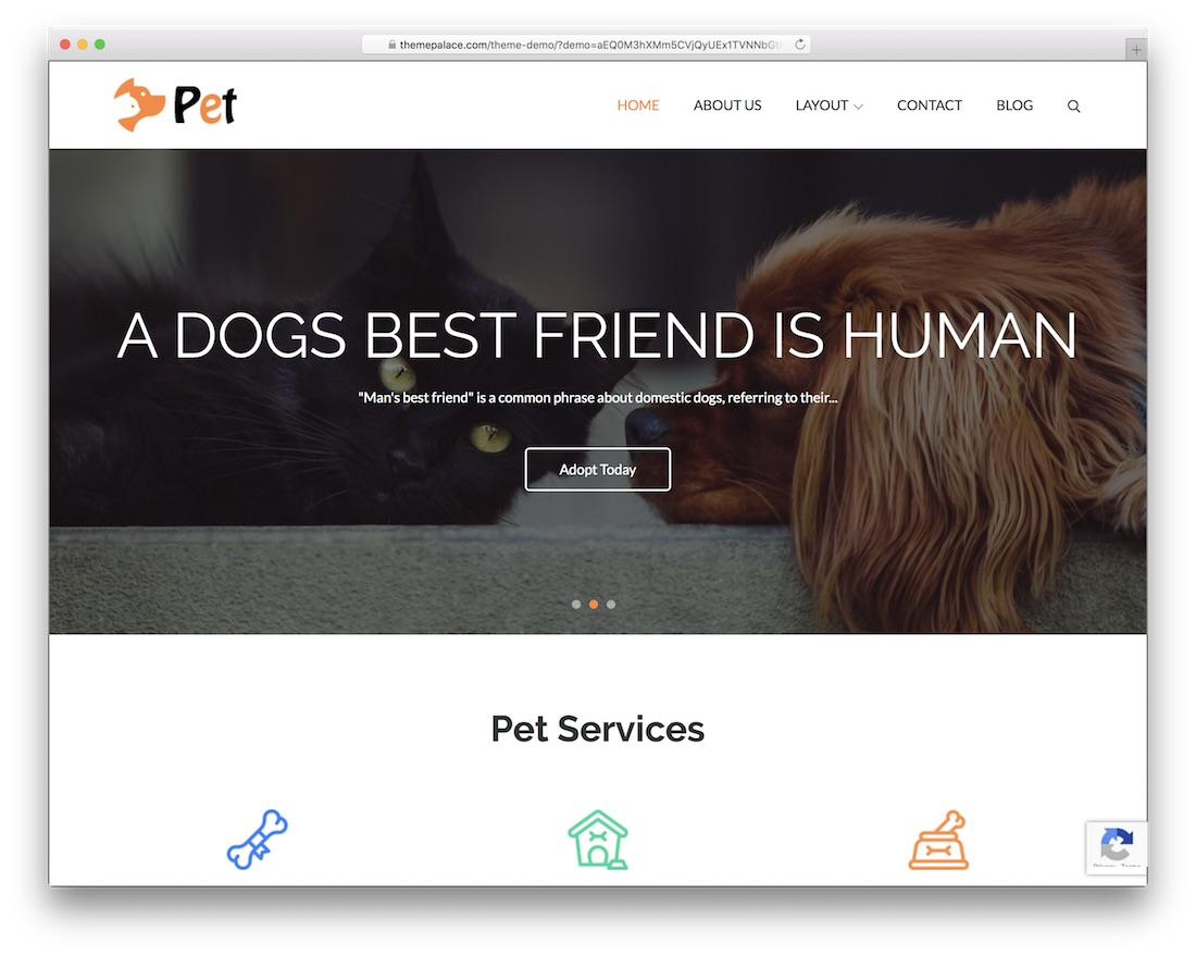 pet free wordpress business theme