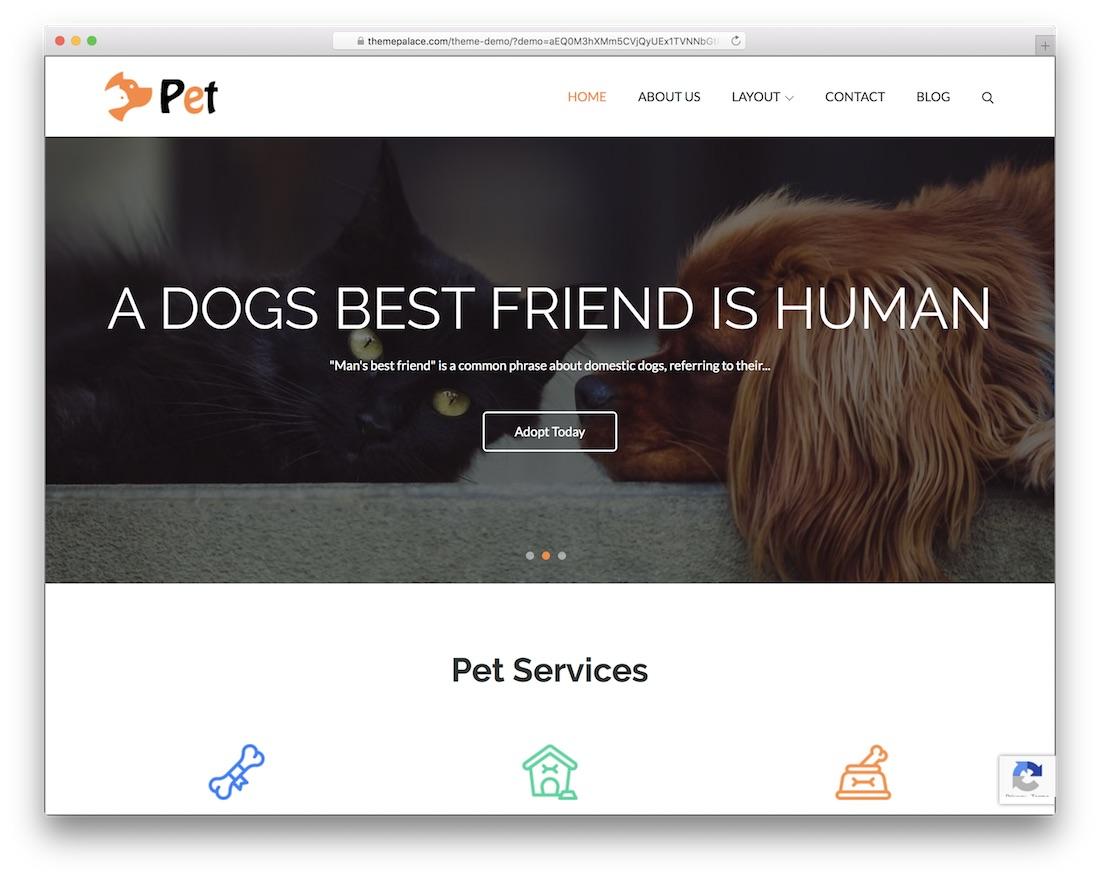 pet free wordpress business theme