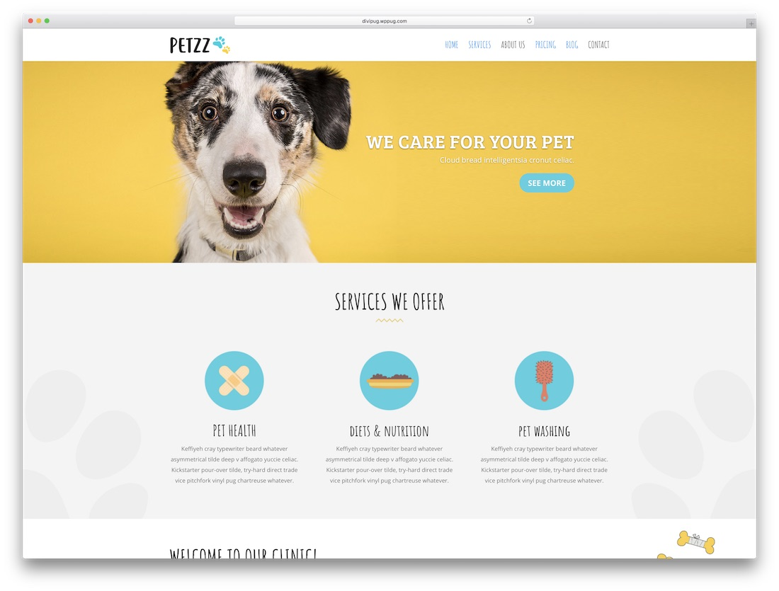 petshop divi child theme