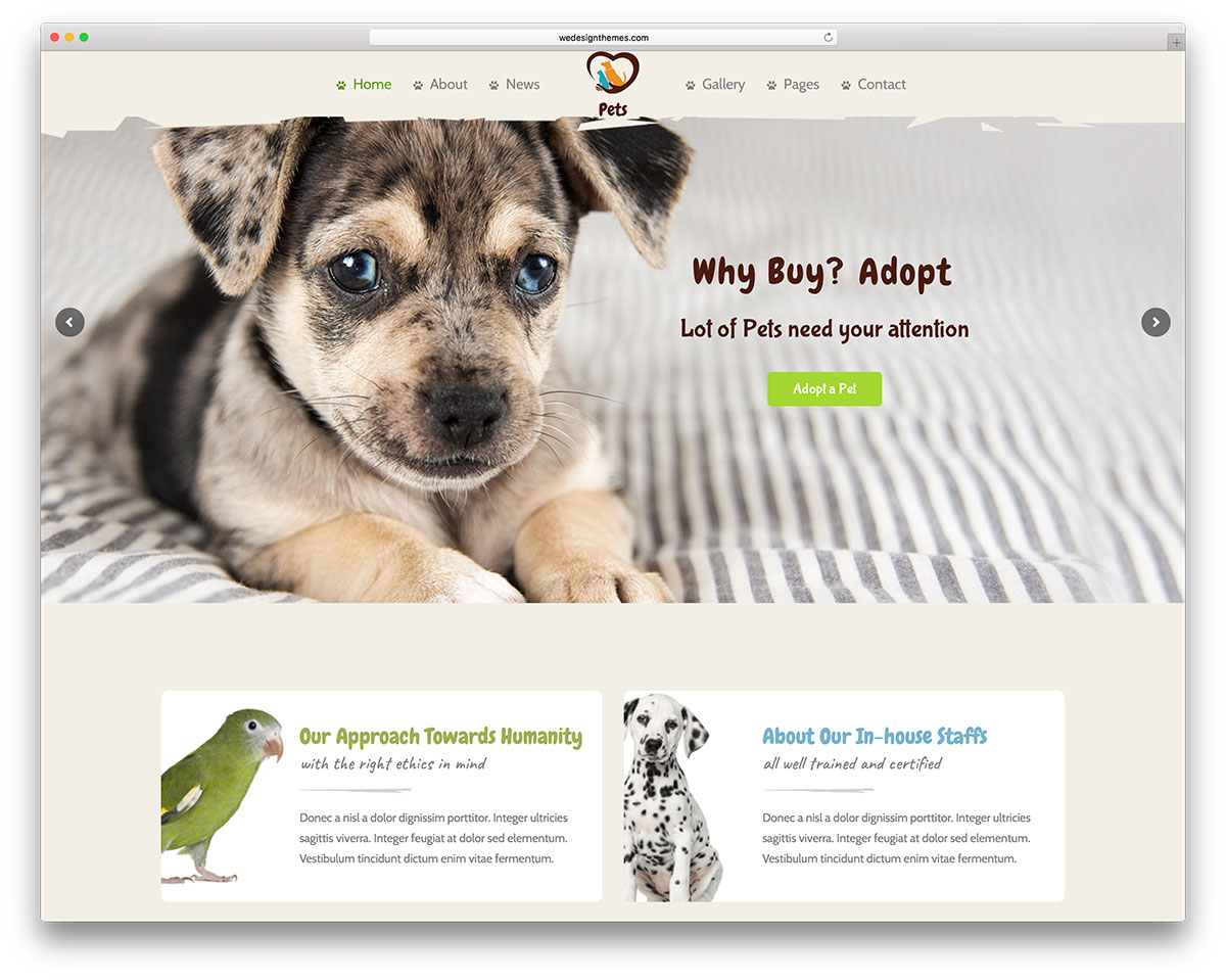 40 finest animal wordpress themes of your choice 2017 colorlib