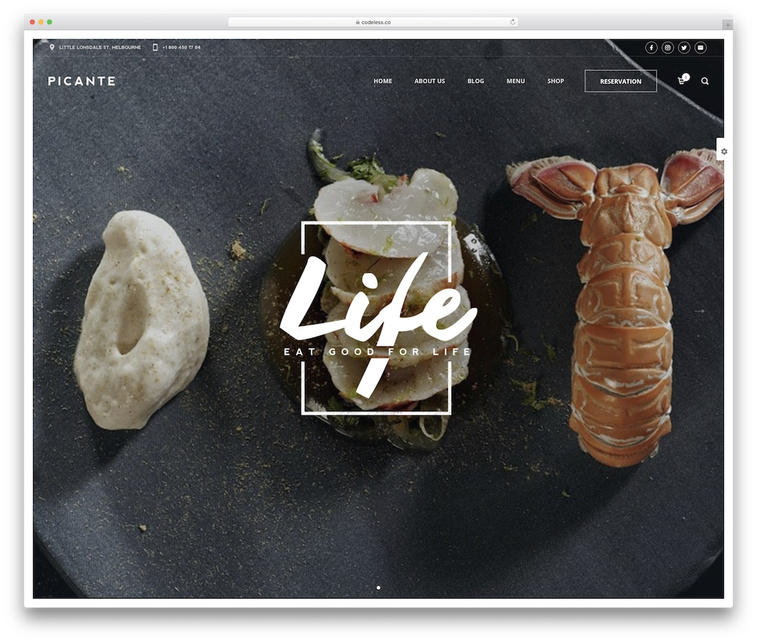 picante food wordpress theme