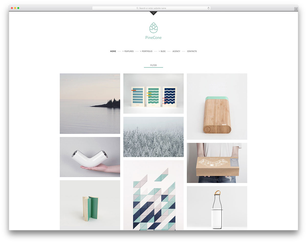pinecone-minimal-portfolio-website-template
