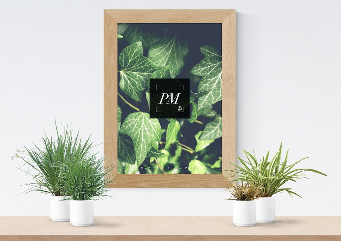 plant vases with wooden frame poster mockup