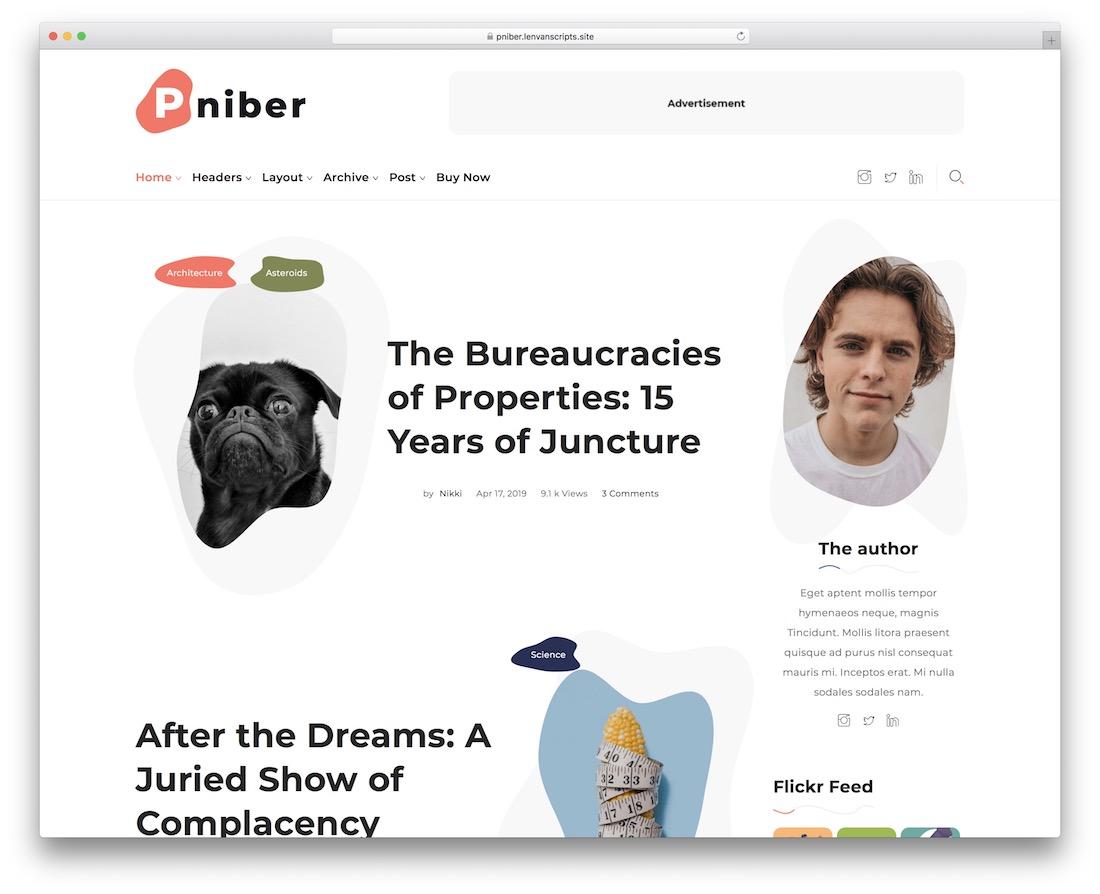 pniber tumblr style wordpress theme
