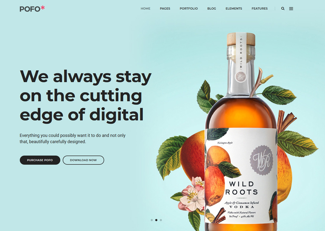 pofo-interactive-website-templates