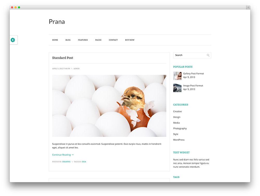 prana - tema blogging mínimo
