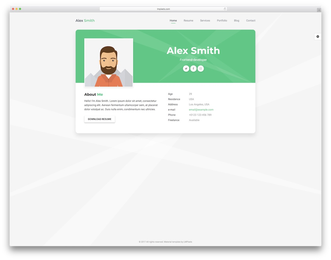 pro card resume template