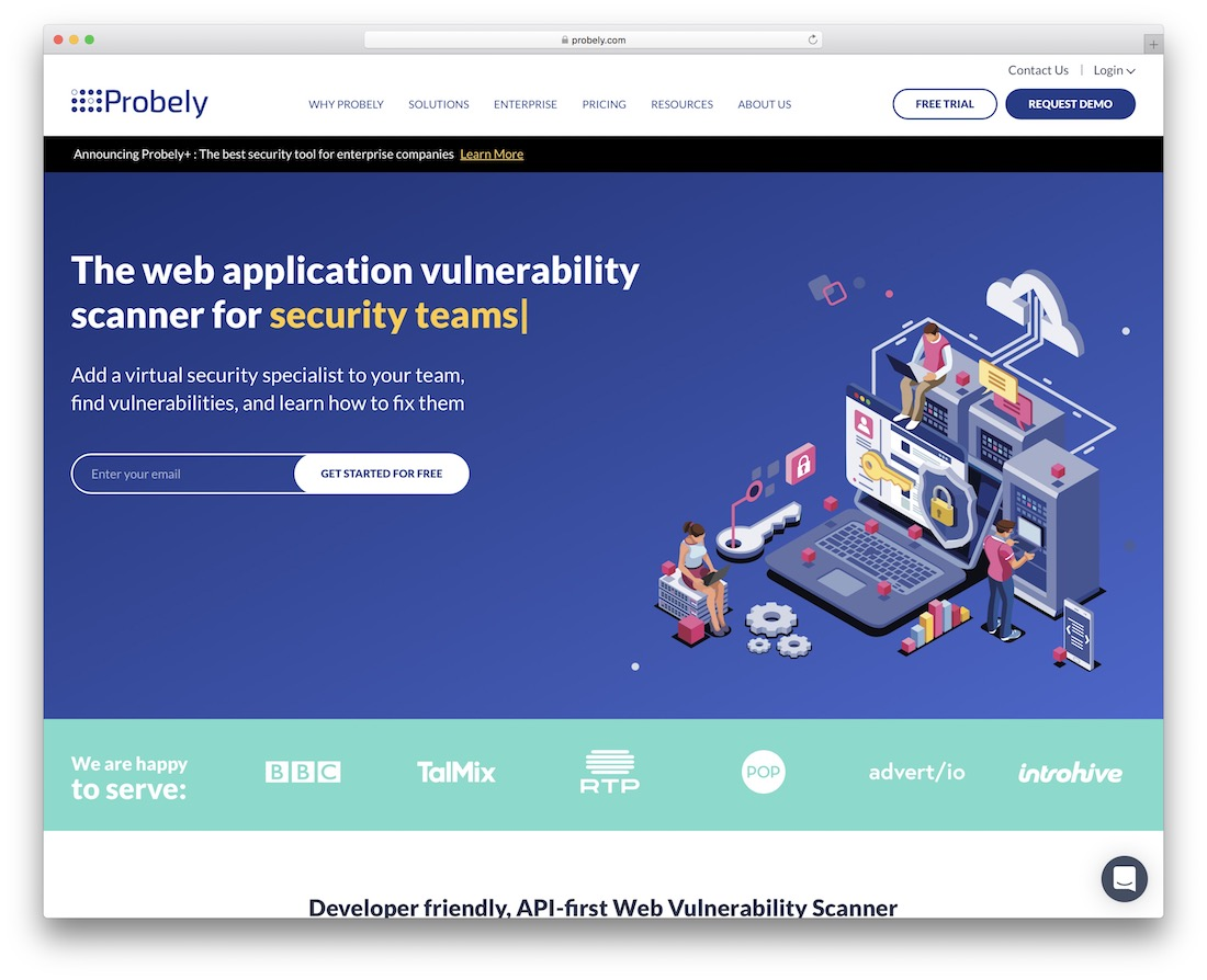 probely security tool