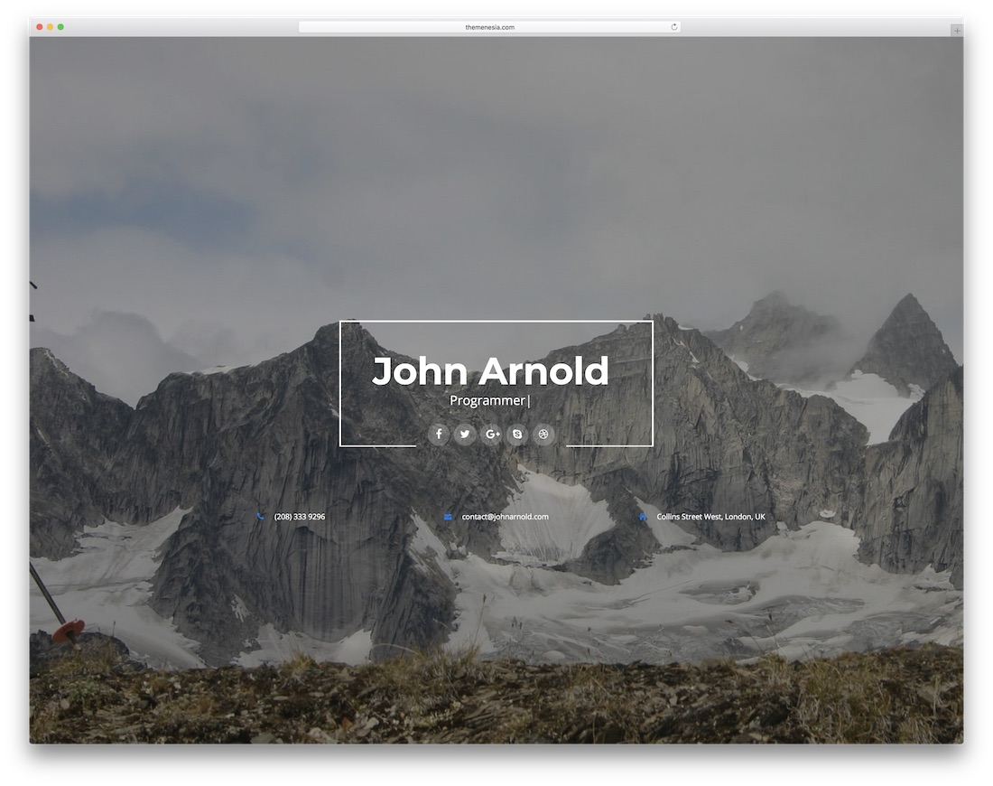 profession bootstrap personal website template