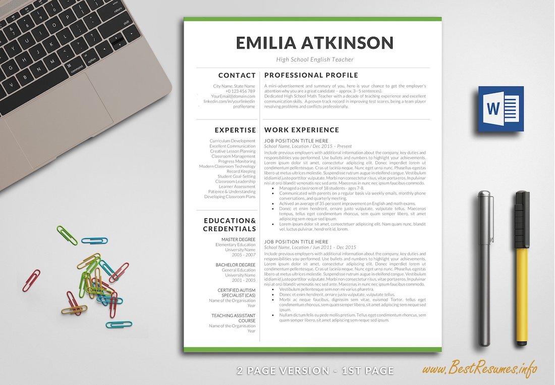 professional resume word cv word