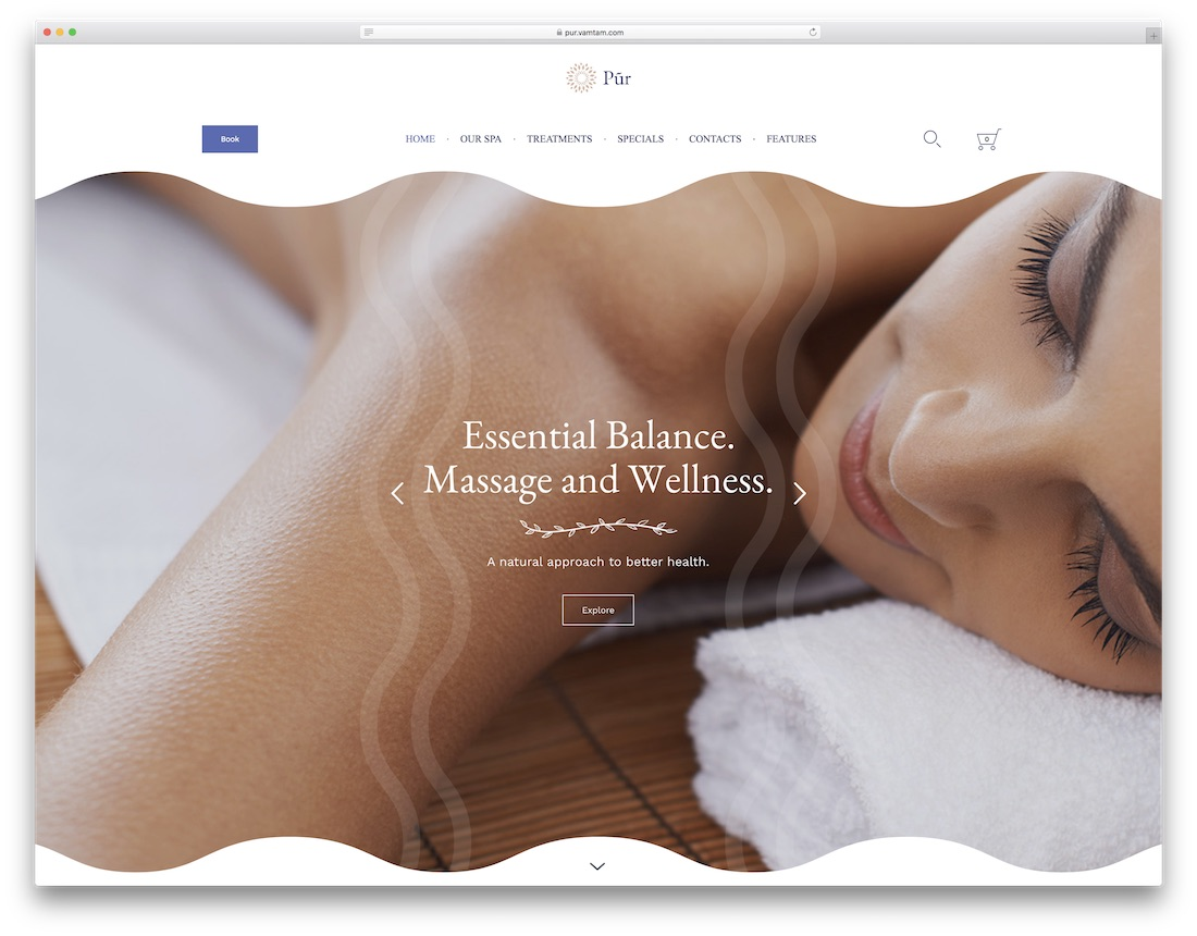 37 Beautiful Spa & Beauty Salon WordPress Themes 2019 - Colorlib
