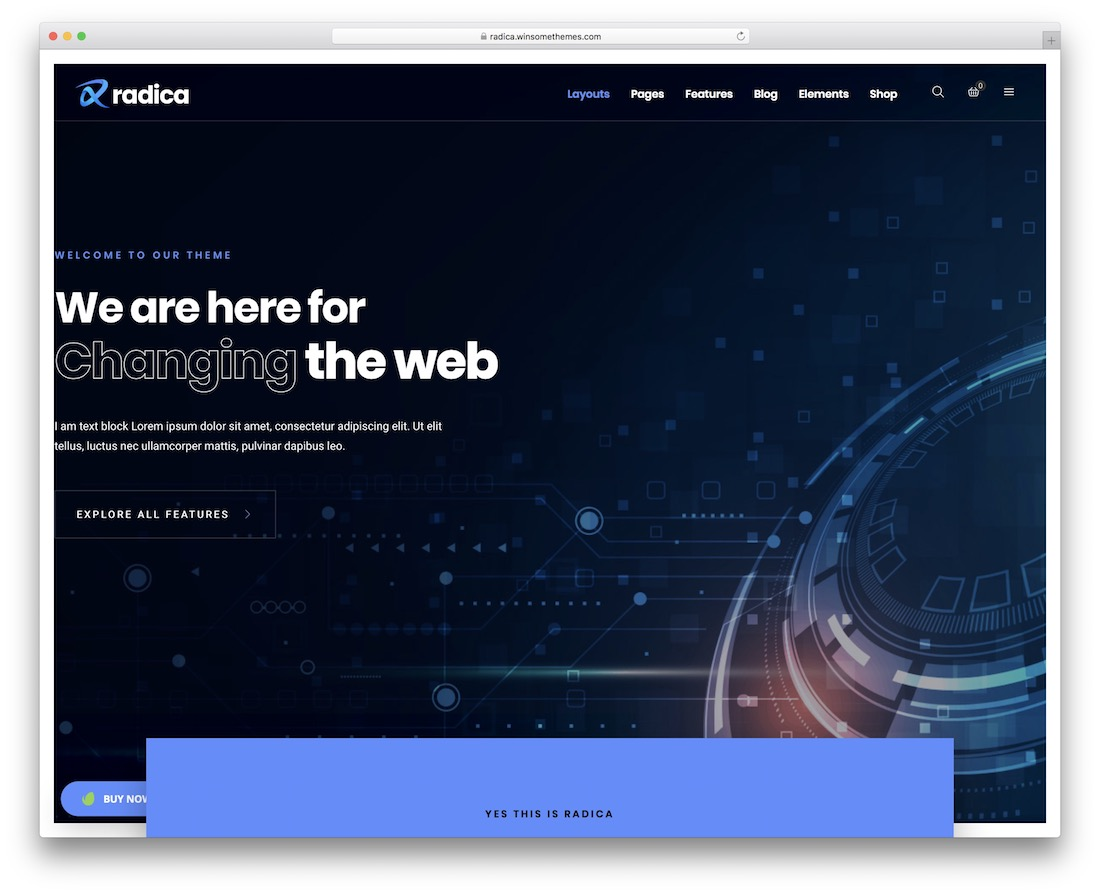 radica customizable wordpress theme