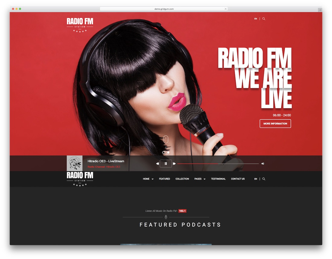 radio fm musician website template