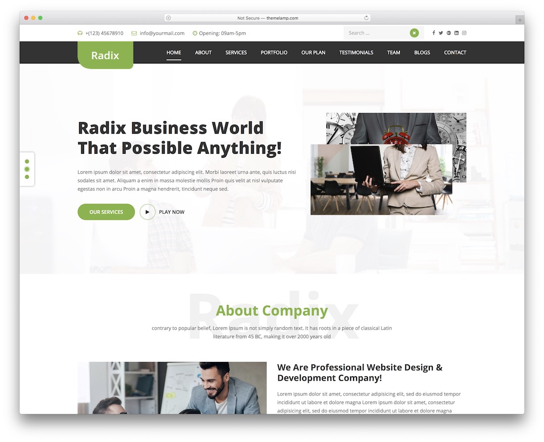 radix multipurpose free wordpress theme