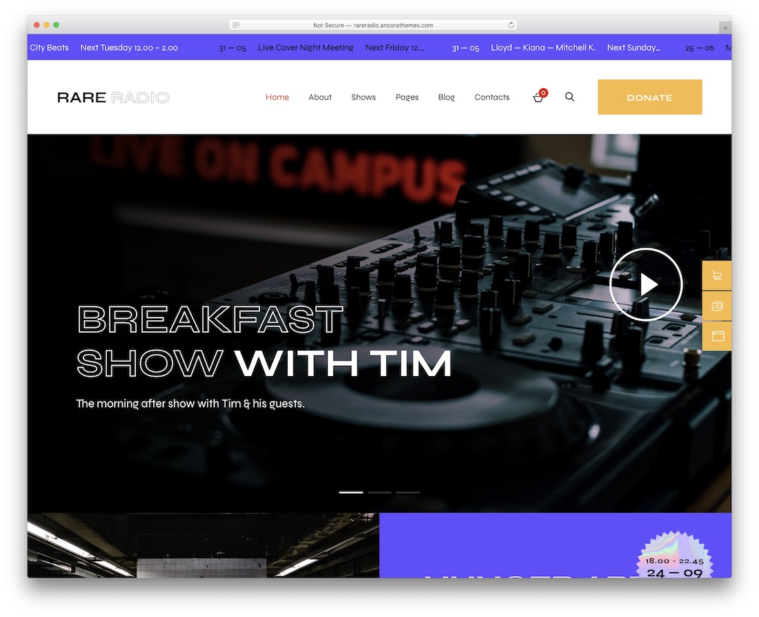 rare radio music wordpress theme