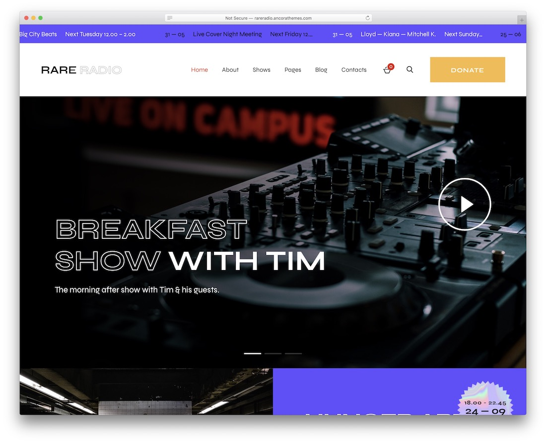 rare radio wordpress radio station theme