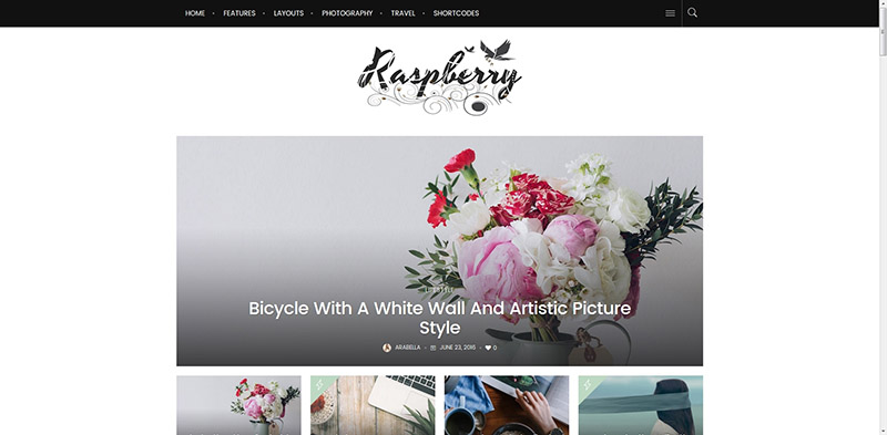 Raspberry: A Fashionable News, Magazine & Blog WordPress Theme