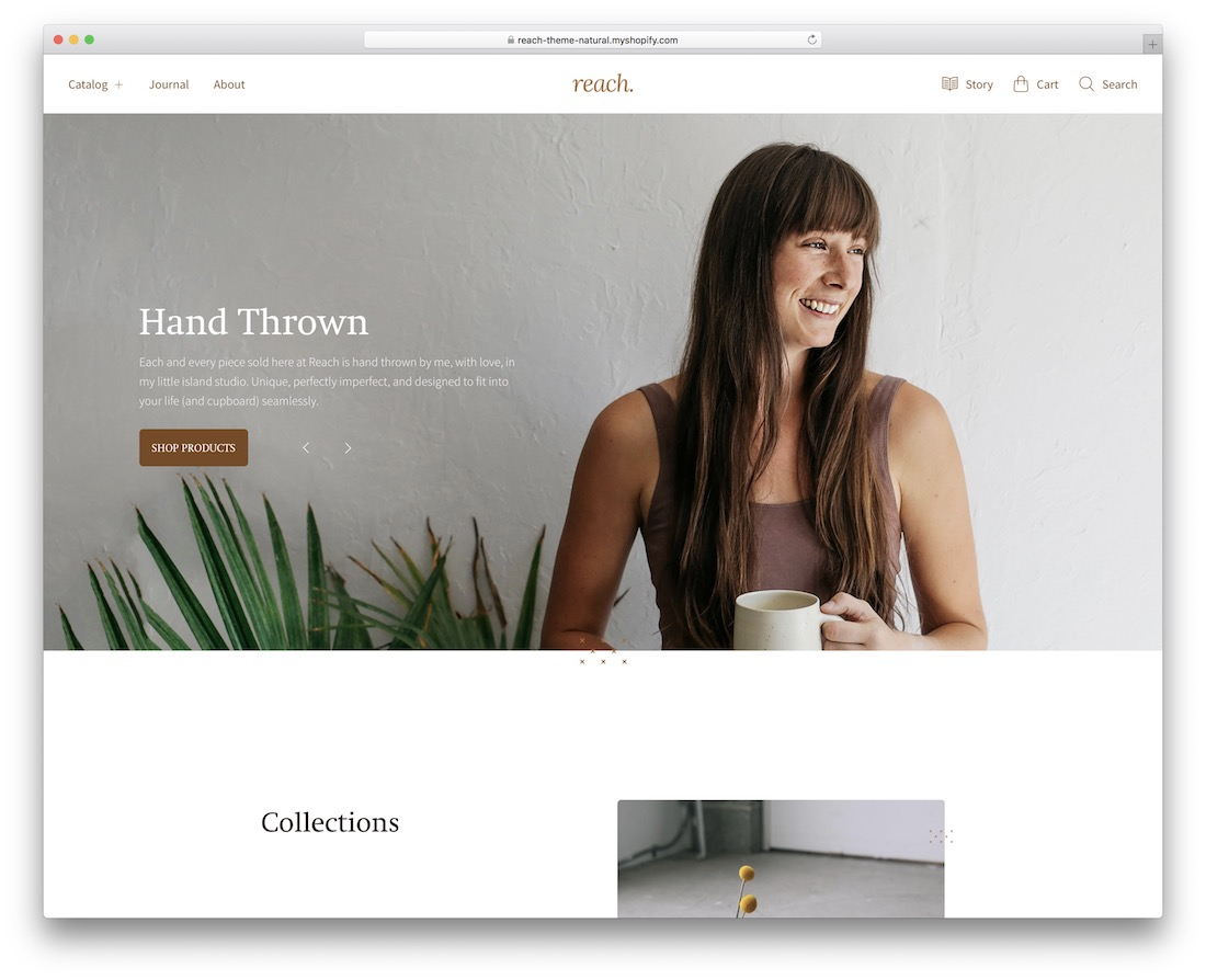 reach simple shopify theme