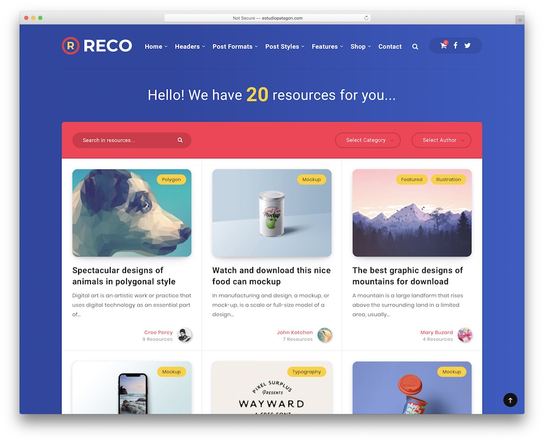 reco easy digital download theme
