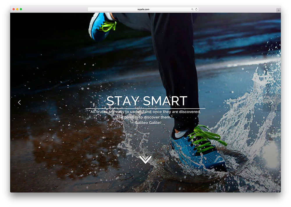 repellx-creative-startup-landing-page-using-x-theme