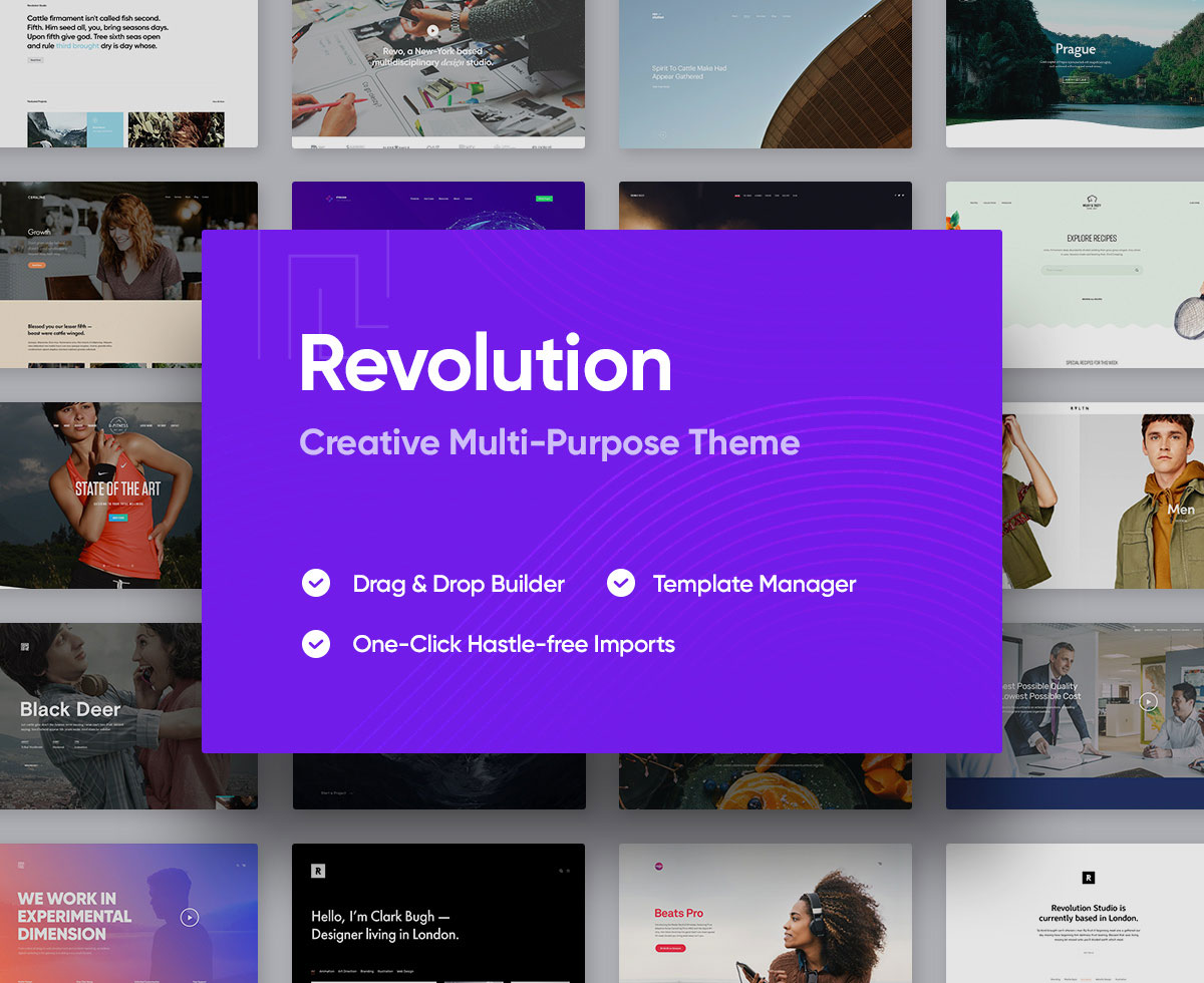 revolution high quality wordpress theme