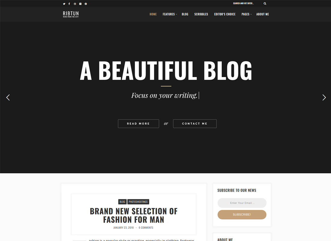 RibTun | WordPress Blog Theme For Writers