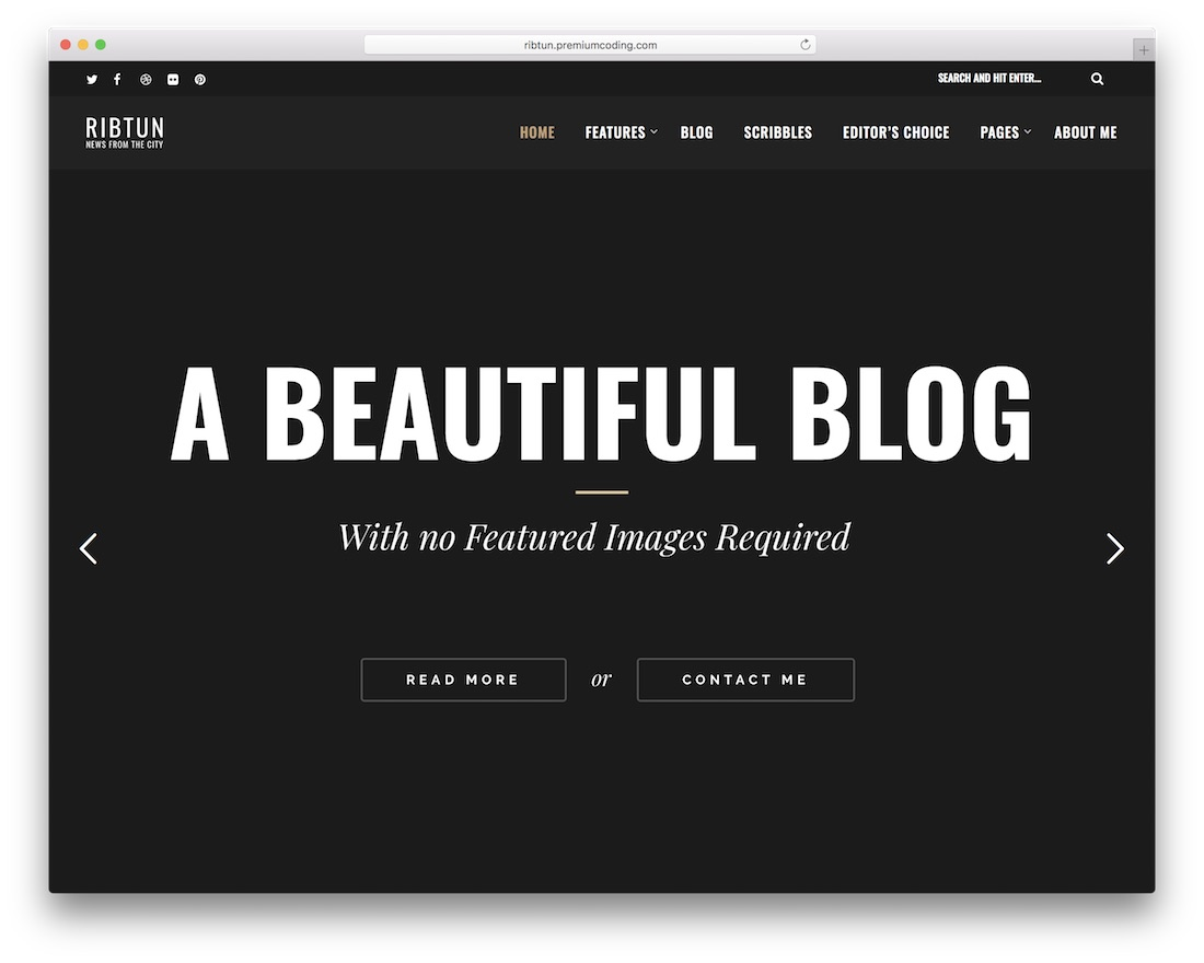 ribtun wordpress theme for writers