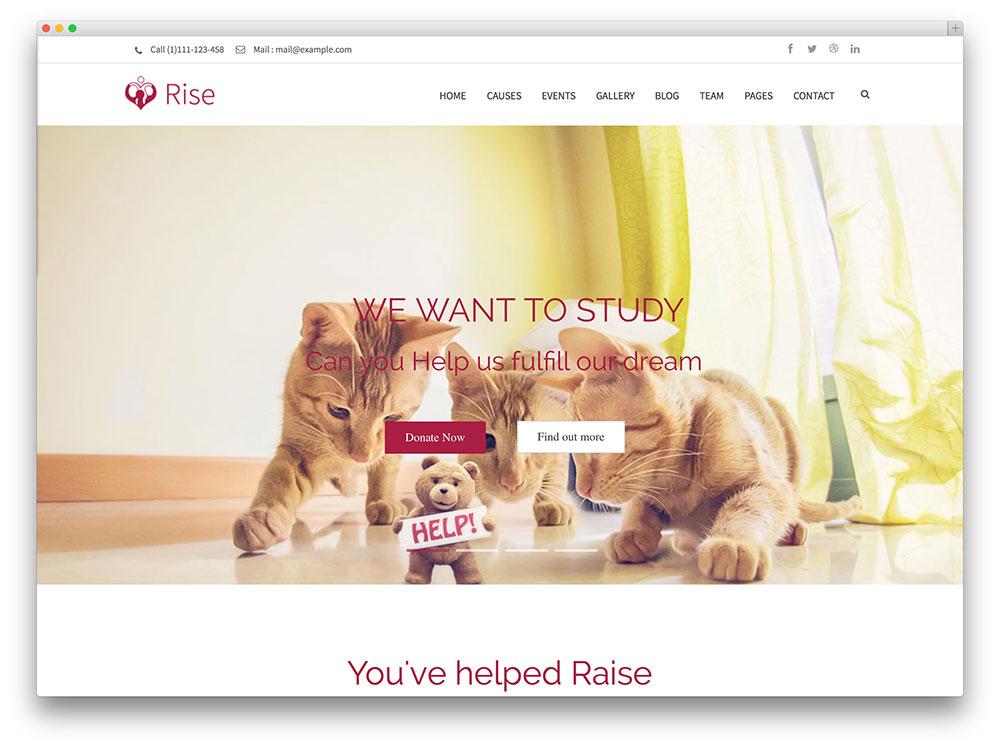rise non-profit organization theme