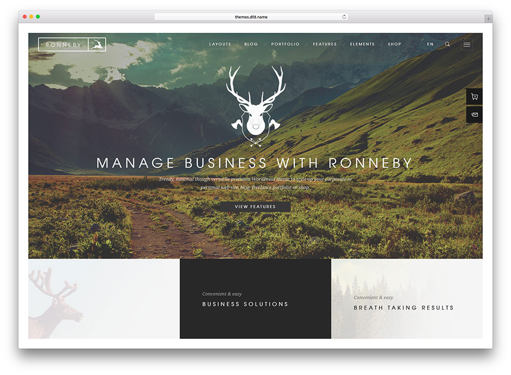 ronneby-multipurpose-wordpress-theme
