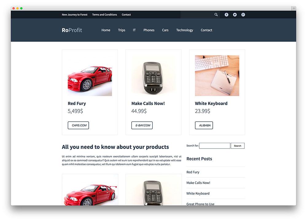 roprofit WordPress theme