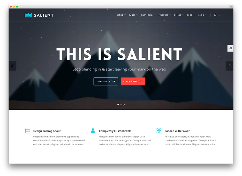 salient-clean-professional-theme