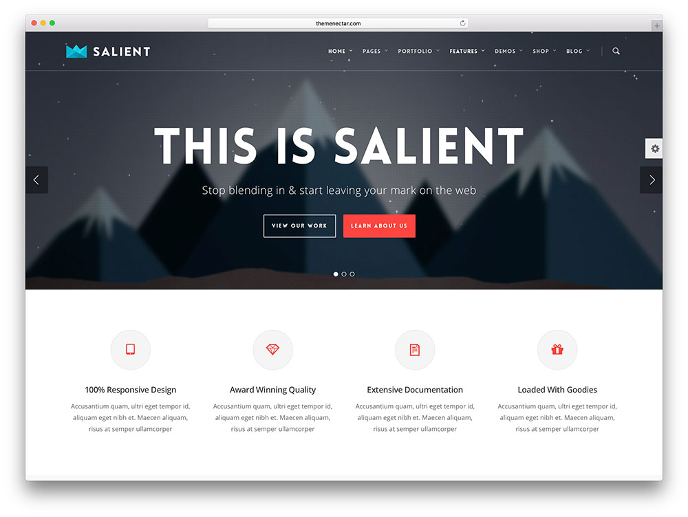 salient - modern local business theme